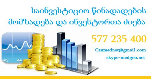 577 235 400 საინვესტიციო წინადადების მომზადება და ინვესტორთა ძიება