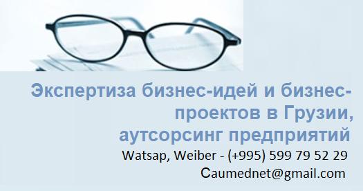 Экспертиза бизнес-идей и бизнес-проектов в Грузии