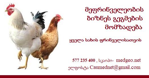 მეფრინველეობის ბიზნეს -გეგმა 577 235 400